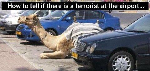 airportterrorist.jpg